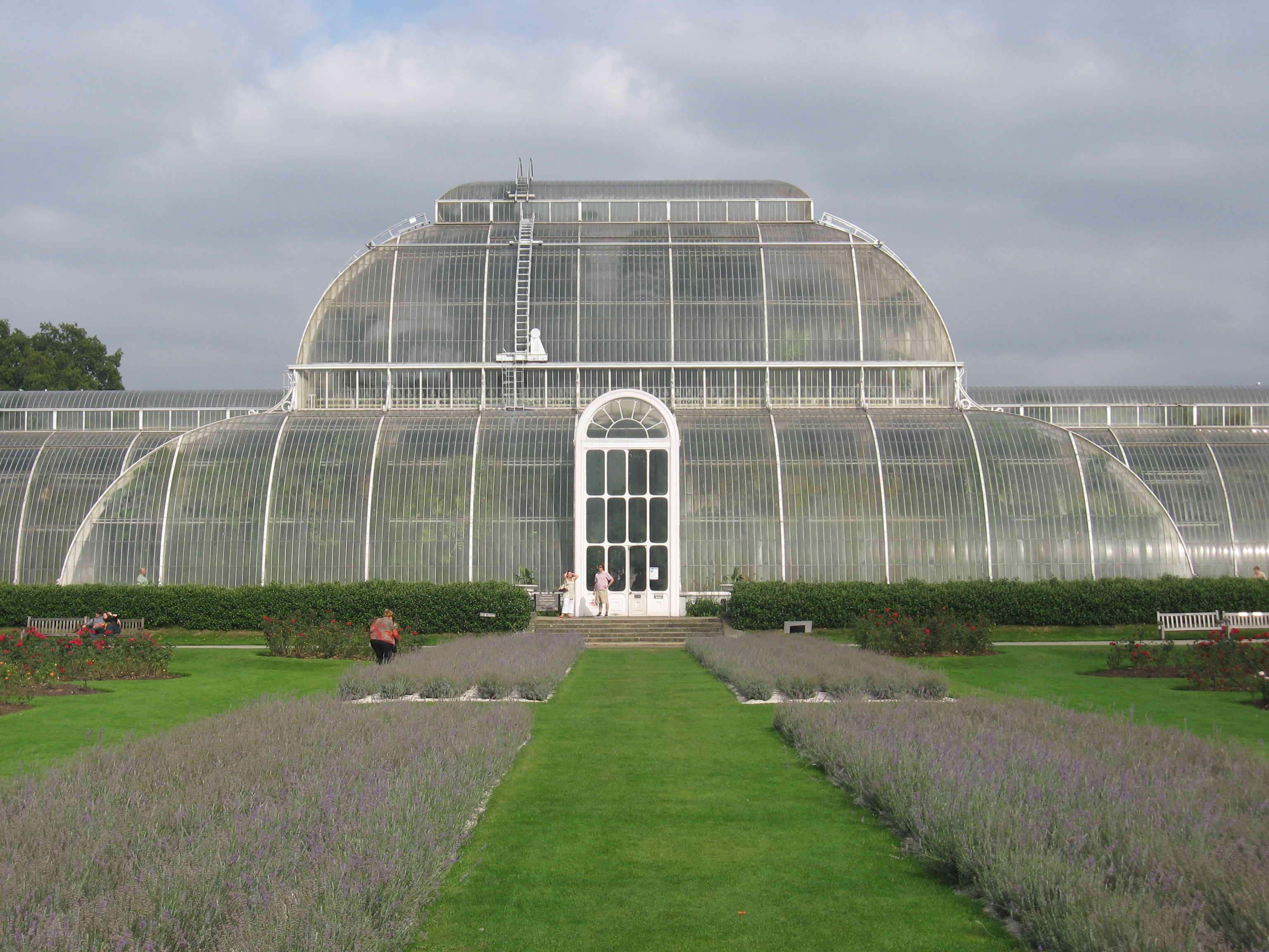 wikipedia-A Kew-kertek levendulával