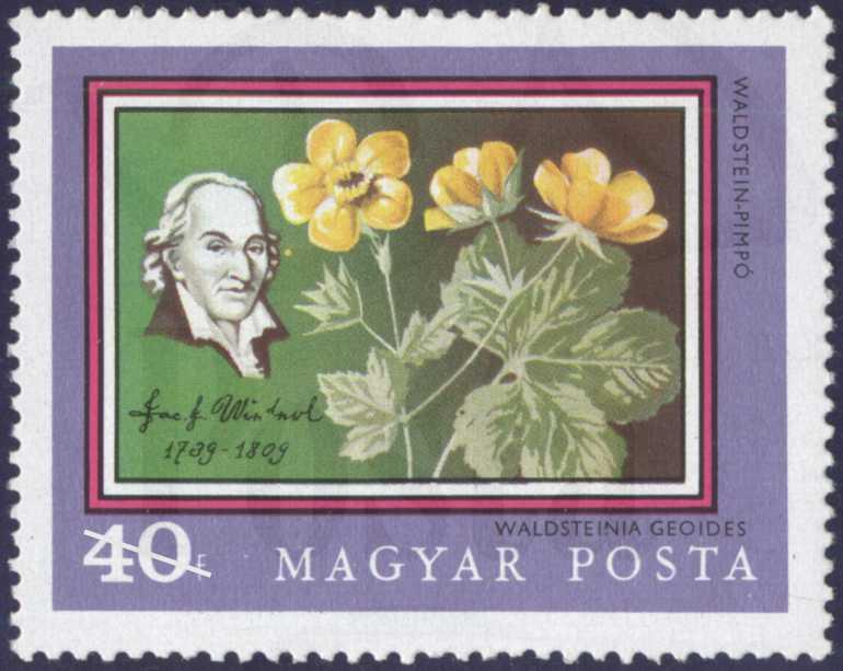 http://dka.oszk.hu/-Winterl József egy Magyar Posta által kiadott bélyegen