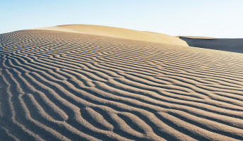 Zöld sivatag