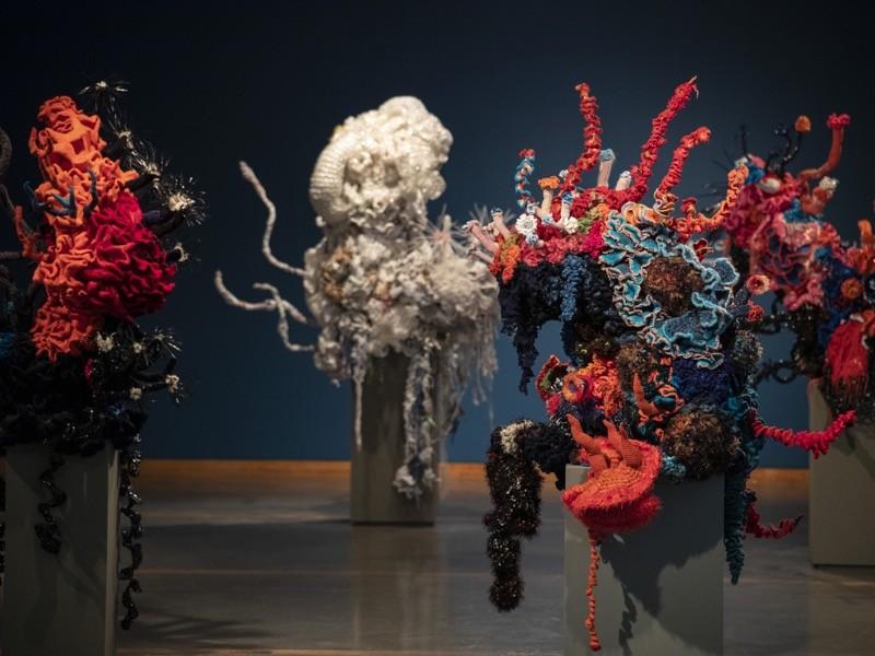 Nature.com/Stephanie Veto/Lehigh University Art Galleries-Korallerdők fonalakból – Christine és Margaret Wertheim, a Los Angeles-i Institute for Figuring alapítóinak munkái