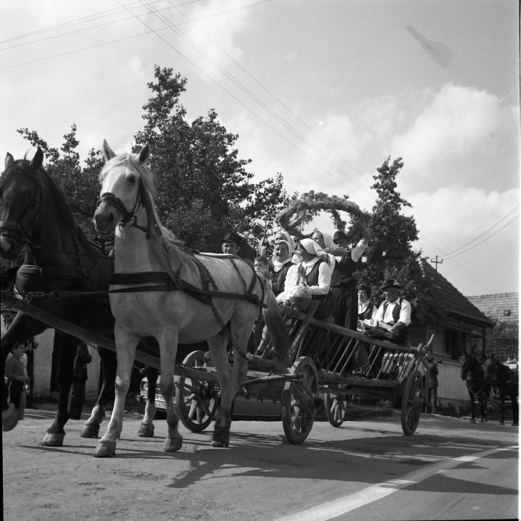Bortnyik György-Aratási koszorú készítése és ünnepség keretében való beszállítása a mezőről Kézdipolyán, 1970-es évek