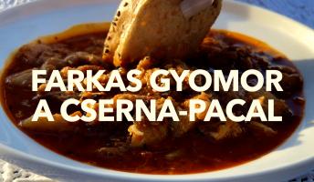 Cserna-Szabó András pacalreceptje