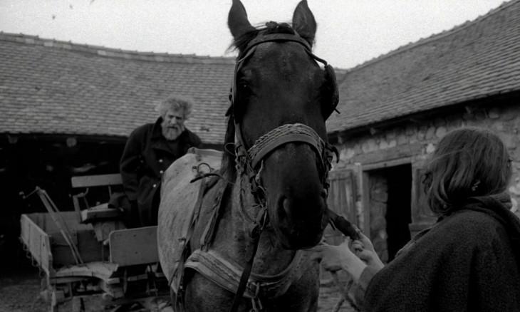 IMDB-Derzsi János (b), Bók Erika (j) és Ricsi (a ló) Tarr Béla: A torinói ló című filmjében