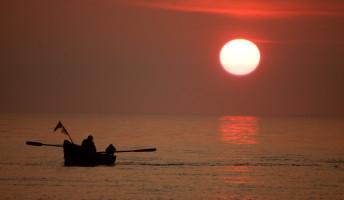Döme Barbara: A horgász, a mákos tészta meg az aranymakréla