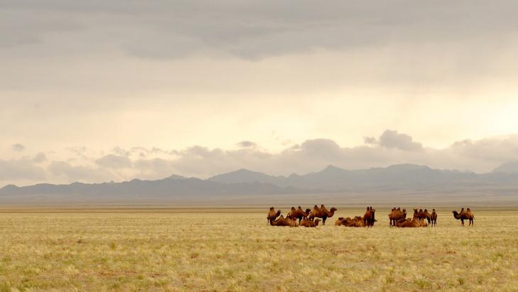 pixabay.com-Mongólia, Góbi sivatag