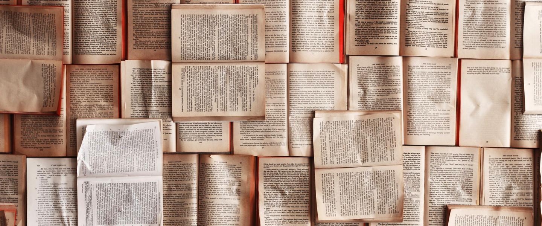 Ők nyertek a magyar irodalom pályakezdő fordítók pályázatán
