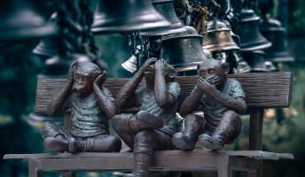 Moldova György: A harmadik majom – könyvajánló