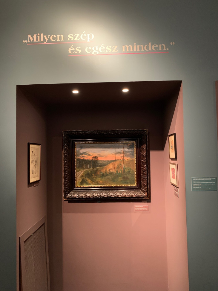 Kovács Zsófia-Csáth - A varázsló halála című kiállítás a Petőfi Irodalmi Múzeumban