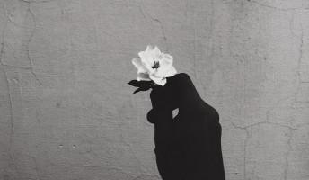 Növényvédő virággyilkos