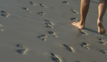 Döme Barbara: Sanyi ökológiai lábnyomot hagy