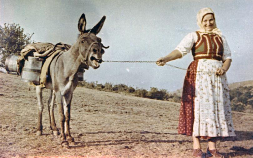 """Hagyományok Háza, Folklórdokumentációs Könyvtár és Archívum-Tötszegi Károlyné Kozma Anna """"Nuki"""" viseletben szamárral. Méra, 1960-as évek"""