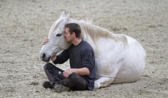 Világsztárokkal játszik a lovaskaszkadőr