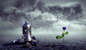 Döme Barbara: Sanyi robotot rendel