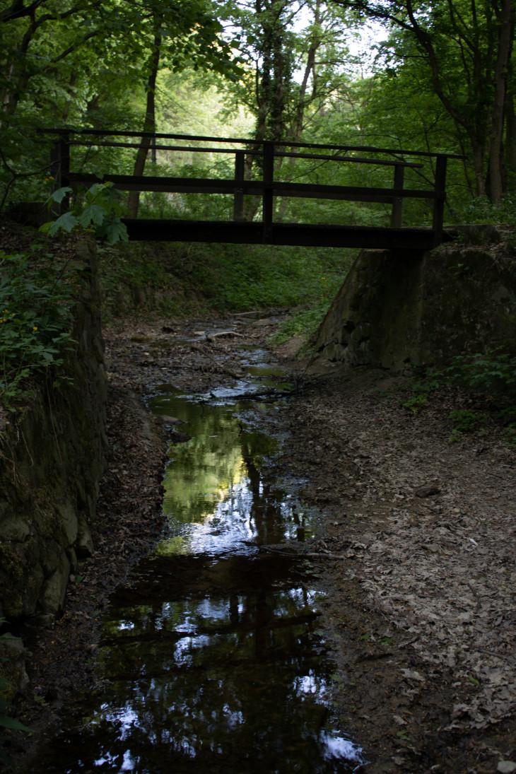 Nyírő András-Szentlélek-patak, Pilis